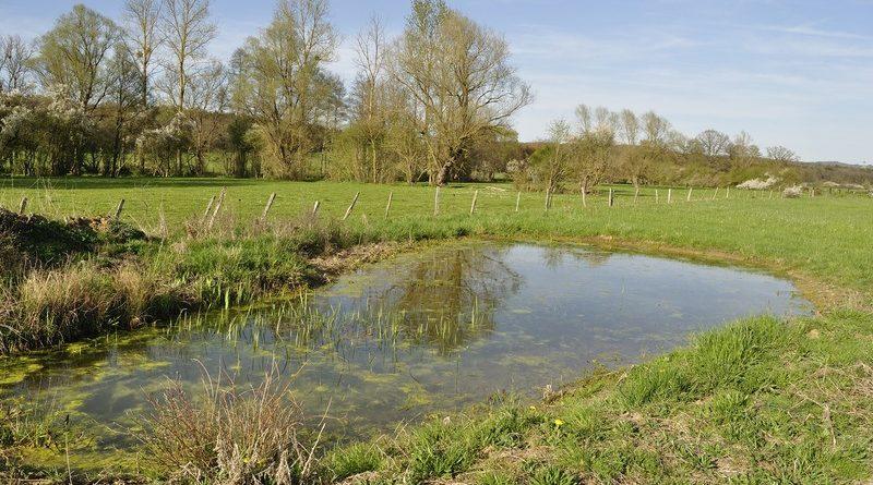 EPTB Vienne : Prime en faveur de la suppression des plans d'eau